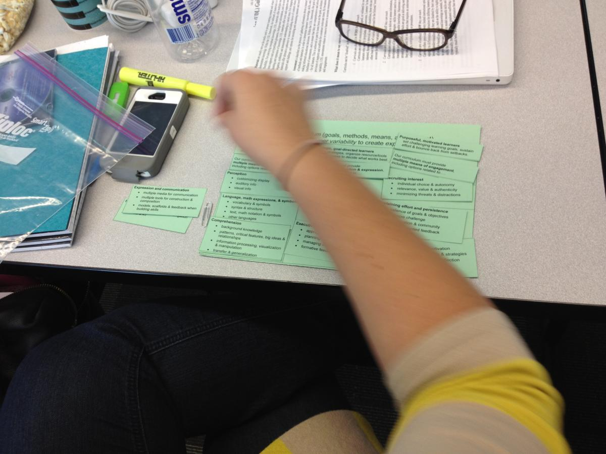 A graduate student explores the UDL guidelines